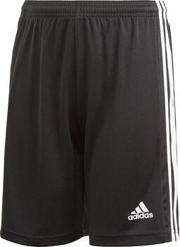 adidas Squadra 21 shorts barn/junior Herre Svart