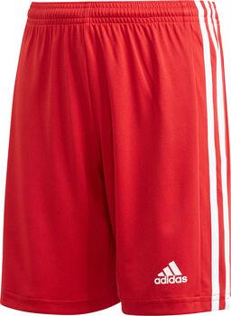 adidas Squadra 21 shorts barn/junior Rød