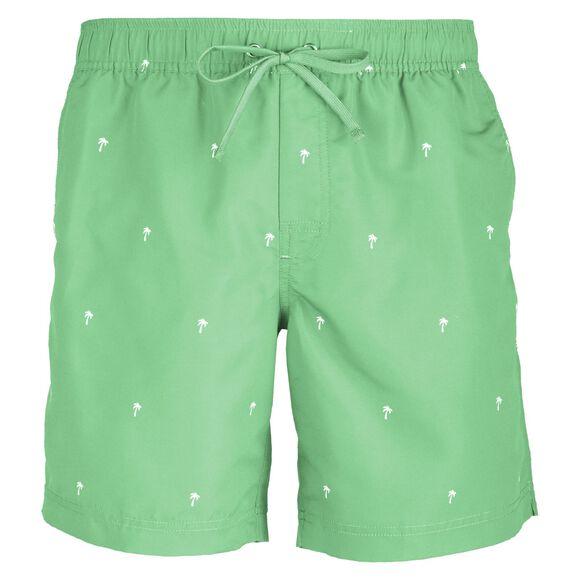 Scale Shorts Herre