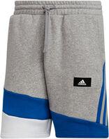 Sportswear Colorblock shorts herre