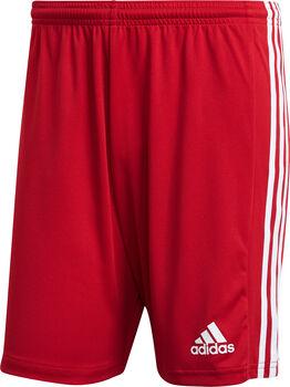 adidas Squadra 21 shorts herre Rød