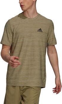 adidas Aeroready Designed To Move Sport Stretch t-skjorte herre Grønn
