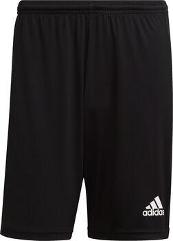 adidas Squadra 21 shorts herre Svart