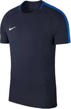 Nike Dry Academy 18 teknisk t-skjorte herre Blå