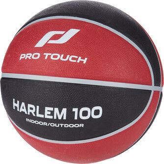 Harlem 100 basketball
