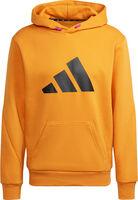 Sportswear Future Icons Winterized hettegenser herre