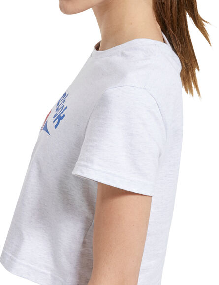 Classics Big Logo Tee t-skjorte dame